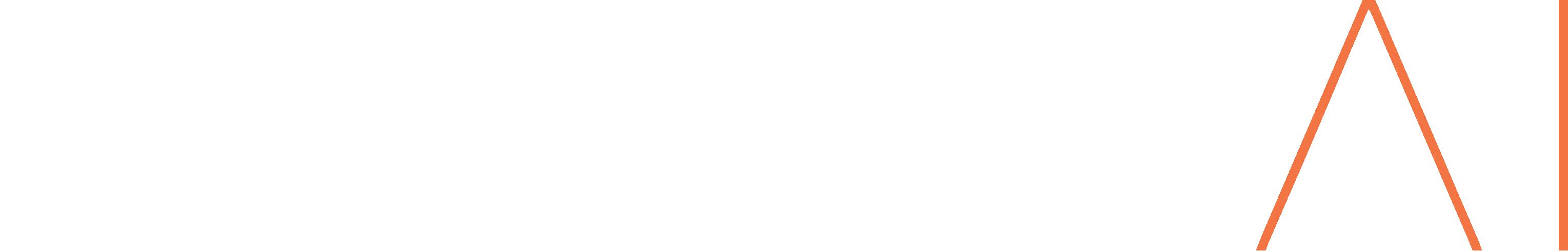 Evolve AI